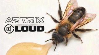 Astrix & LOUD - Genetic Lottery (LIVE EDIT)
