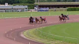 Vidéo de la course PMU PRIX DE CARPENTRAS