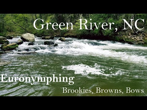 WBD - Green River NC Euro Nymphing/Tightlining