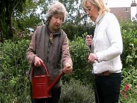 Watering Can From Haws