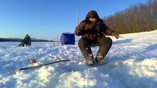 Зимняя рыбалка на реке Амур. Тунгуска. Пасаны к победе шли...