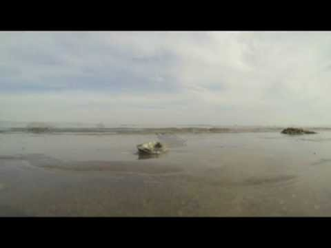 GoPro Camera Sea Shore: Early Morning New Age Music for Sun Salutation and Yoga