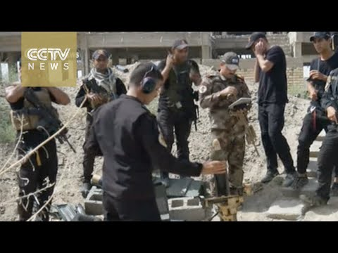 ISIL losing ground in Iraq