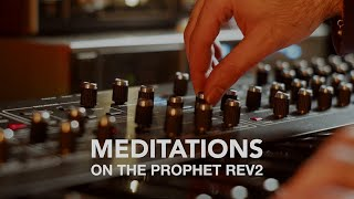 Meditations on The Prophet Rev2 Synthesizer