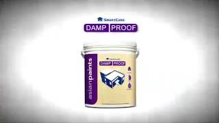 Asian Paints Damp Proof Youtube