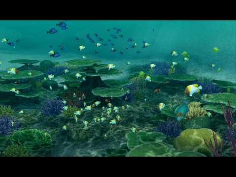 Endless Ocean: Blue World -- Aquarium/ Let's Get Ready to Dive