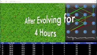 Evolution of Neural Networks using Genetic Algorithms in JavaScript