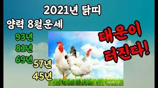 2021년 신축년 닭띠 8월운세 대운이 풀린다!