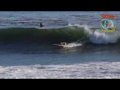Surfing dog !  Skyler the surfing dog rides big Mavericks size dog waves !