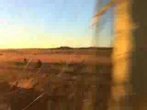 SANDF recruiting video