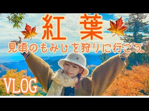 【Vlog】もみじ狩りに行ってみた【高尾山】