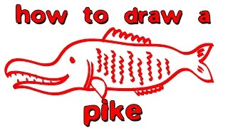 How to draw a pike / How to draw a fish
