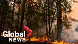 Australian bushfires could threaten Sydney