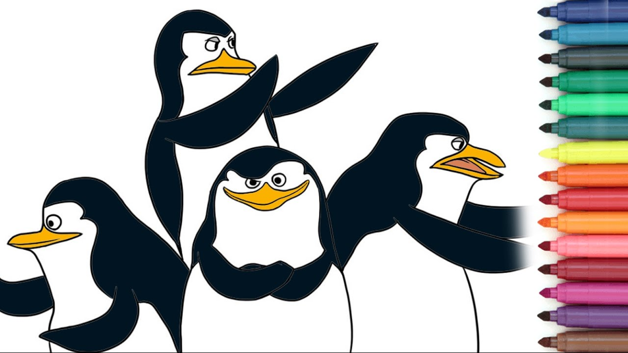 the penguins of madagascar skipper kowalski rico private