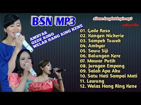 Dangdut Koplo Full Album Terbaru Bintang Swara Nada Ambyar Sla