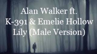 Alan Walker ft K 1Emelie Hollow Lily