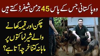 This Pakistani Owns 45 German Shepherd  How Much He Spends Daily on Their Food?