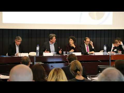 Beyond the HLEG, what EU policy agenda? - Finance Watch Sustainable Finance Conference, panel 3