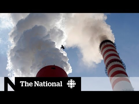 Celebrity voices call for change at global climate conference