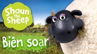Biên soạn 16-20 [phần 4] - Những Chú Cừu Thông Minh