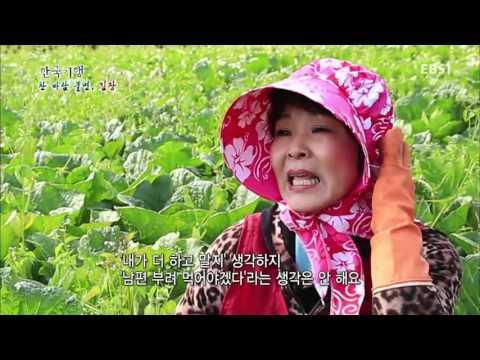 한국기행 - Korea travel_찬바람 불면, 김장 4부 �