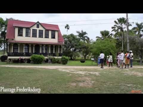Commewijne river cruise - Orange Travel Suriname