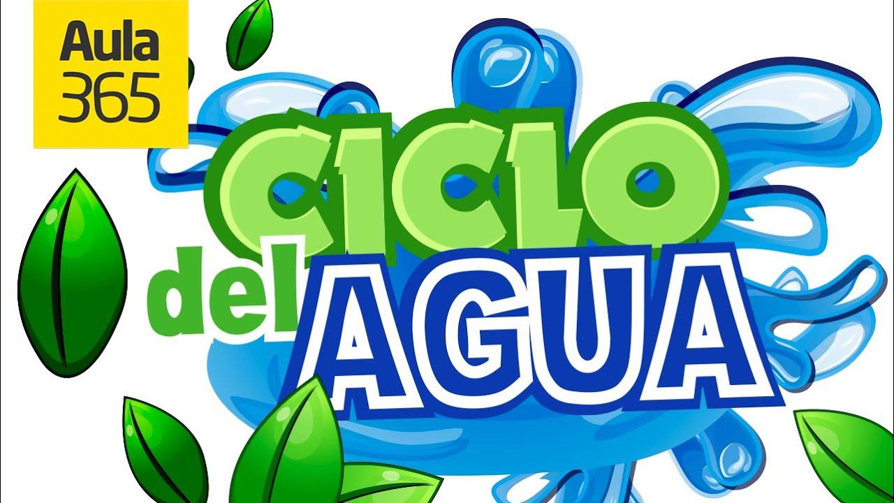 El Ciclo Del Agua Y Sus Estados Videos Educativos Para Niños