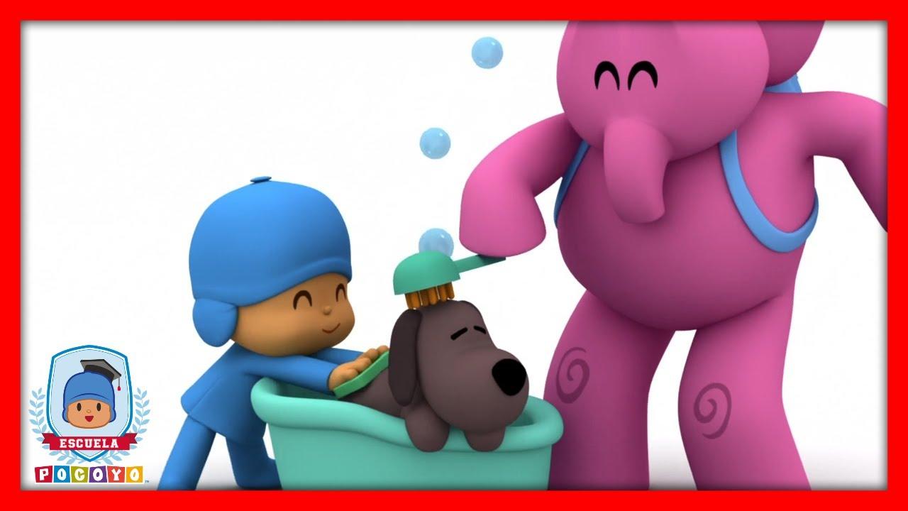 🎓 Escuela Pocoyó - Aprende Sucio y Limpio | Caricaturas y dibujos animados educativos para niños