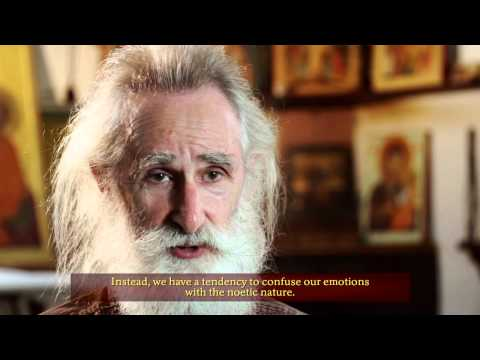 Q&A with Vladislav Andrejev part I