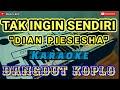 Tak Ingin Sendiri - Karaoke Dangdut Koplo Korg Pa700