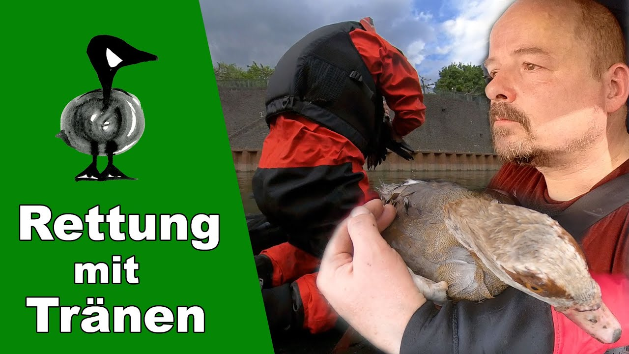 Tierrettung mit Tränen - Tiernotruf #301