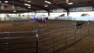 Uno triton- Jared Lesh cowhorses