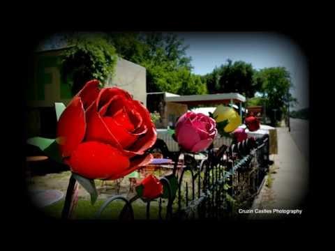 STROLL THROUGH GLEN ROSE TEXAS