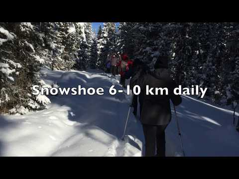 Yellowstone Snowshoeing Small Group Tour 2019