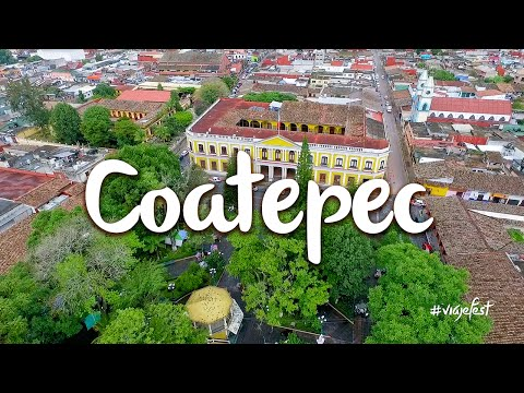 What to do in Coatepec on a weekend
