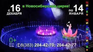 Сказочное новогоднее представление цирка на воде в Новосибирске