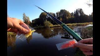 Plastic worm VS real Earthworm fishing   Aliexpress worms Fishing Challenge