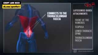 видео Cквозняк, что делать если протянуло шею, спину и т