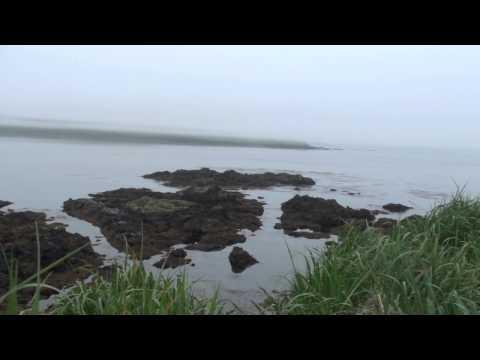Adak Island 2010