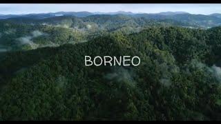 Download lagu Jerry kamit - datun julud - keindahan Alam Borneo