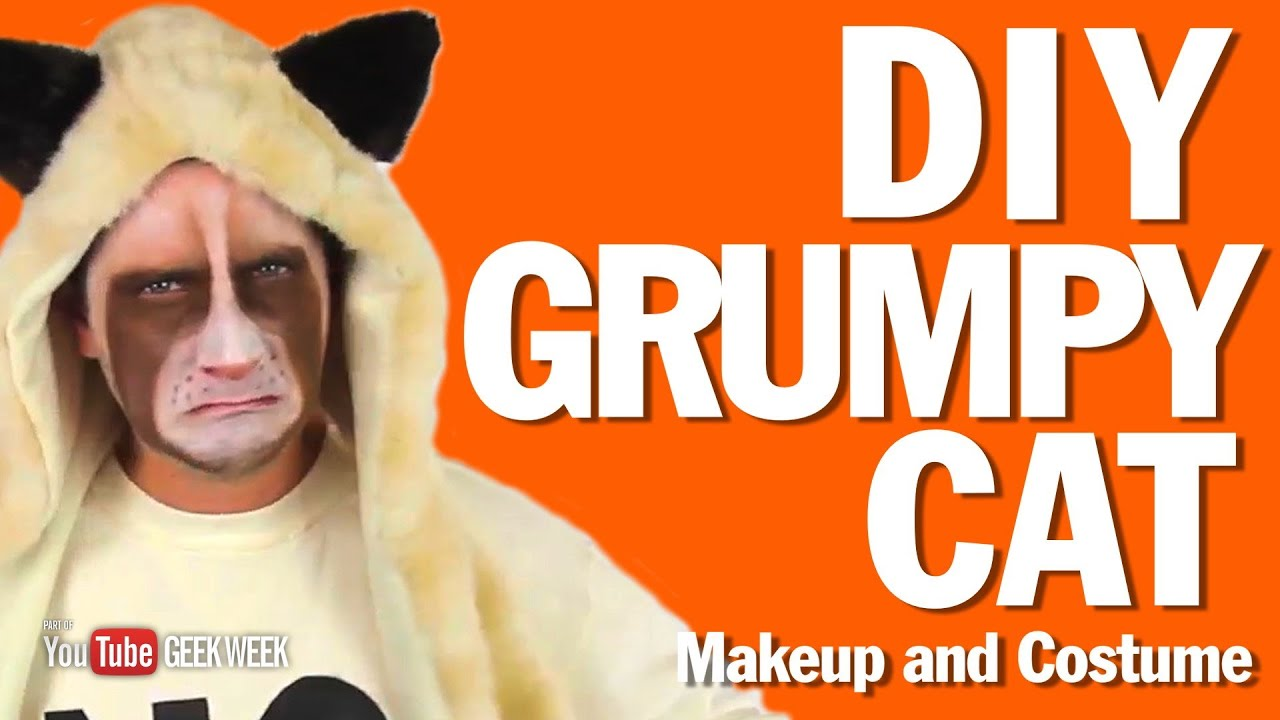 Diy grumpy cat makeup and costume how to youtube solutioingenieria Images