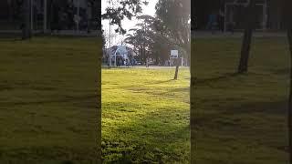 Basquet en el parque Primavesi