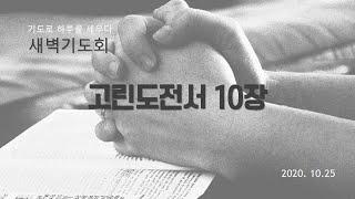 부산영락교회 20201…