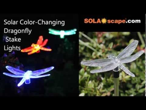 Solar Color Changing Dragonfly Garden Stake Light By SOLAscape.com   YouTube