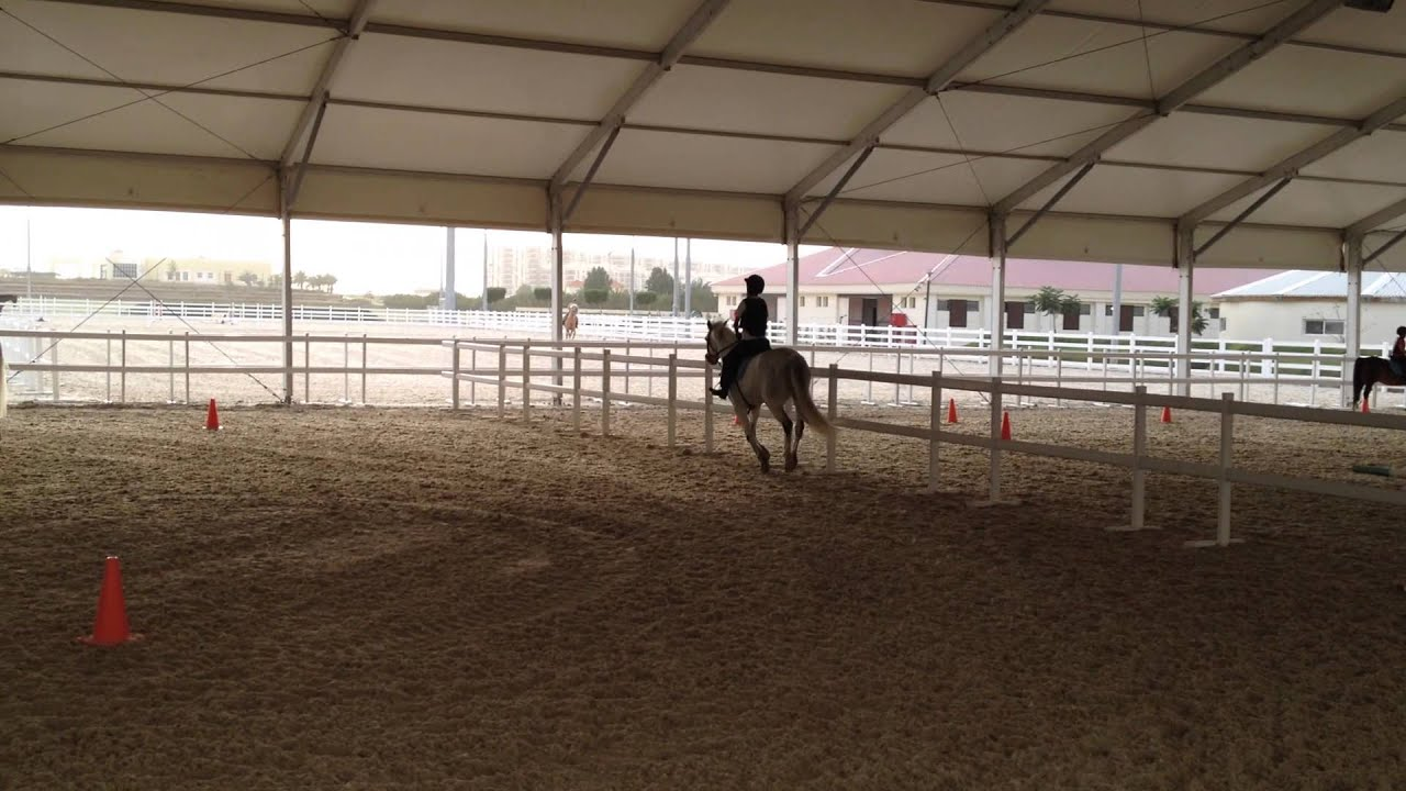 Ahmad S Horse Riding Abu Dhabi Al Forsan 2014 Youtube