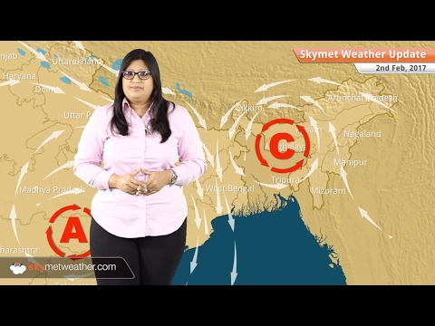 Weather Forecast for Feb 2: Dry weather in India, fog in Delhi, Haryana, Punjab, UP