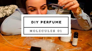 Molecules 01 DIY - below 20 $ ! - Perfume do-it-yourself