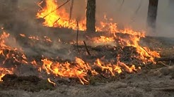 Forest fire intensifies in Chernobyl nuclear zone | AFP