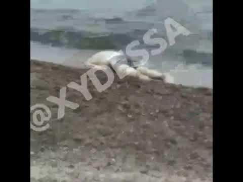 Новости 7 канал Одесса: Всплыл труп на одесском пляже в районе 8-й станции Большого Фонтана