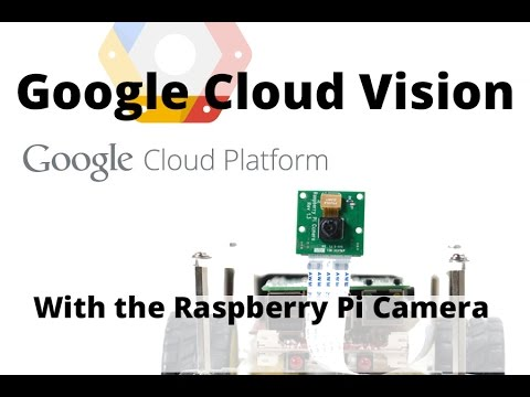 Introduction to Google Vision and the Raspberry Pi Camera